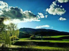 Welcome to Spring Vernon. You reminisce of Ireland.  #explorebc #Vernon #Okanagan #BC #britishcolumbia #beautifulbritishcolumbia #ireland #canada #green #spring #blue #wedding #bcwedding #vernonwedding #okanaganwedding #worldclass #tourismokanagan #explorecanada by 21cbar