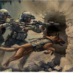 The Ranger Regiment by Stuart Brown showing a Ranger Fire Team and a Military Working Dog assaulting through the breach during a raid. Military Working Dogs, Military Dogs, Police Dogs, Military Art, Special Ops, Special Forces, Military Drawings, Malinois Dog, War Dogs