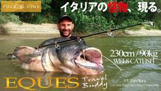 POLE&LINE EQUES&Monster wels catfish caught by Yuri Grisendi,the most famous catfish angler.