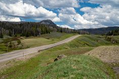 Wyoming Vacation, Side Road, Alpine Lake, Picnic Area, National Forest, Life Images, Day Trip, Wilderness, Places To Go