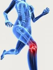 Orthopedics is the study of medicines which is linked with injuries and diseases of musculoskeletal system that incorporates ligaments, tendons, muscles bones, joints and nerves.