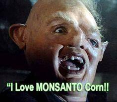 I love Monsanto corn!    #GMO