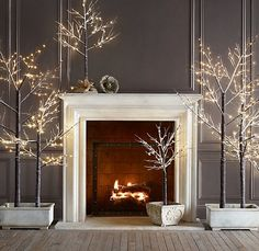 "Christmas Backdrop. De-leafed trees, spray painted white, ""plant' the trees in simple white planters, add white lights on white cord"