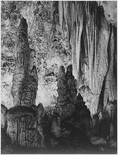 """The large stalagmite formations and the onyx drapes above it, 'in the Kings Palace,' Carlsbad Caverns National Park,"" New Mexico."