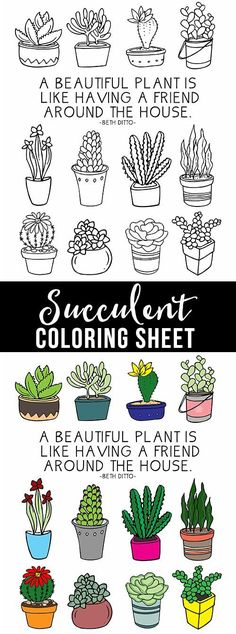 Fun coloring sheet full of succulents for plant lovers! http://livelaughrowe.com