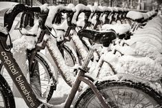 Title  Snow Covered Bicycles   Artist  Stuart Litoff   Medium  Photograph - Photograph