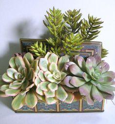 Succulent Centerpiece Faux Succulent Arrangement by rosekraft