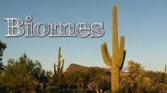Biomes of the World for Children: Oceans, Mountains, Grassland, Rainfore...