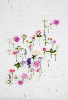 たくさんの種類のお花を、テープで壁に貼っています。 フラワーベースに飾るのとは、またちょっと違う楽しみ方ができますね。