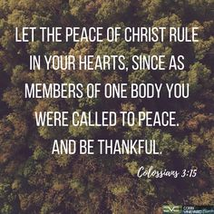 Colossians 3:15 #verseoftheday #bible www.cobbvineyard.com