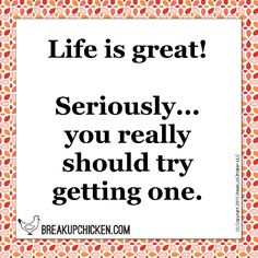 Life is great! you really should try getting one. You Really, Breakup, Haha, Funny Stuff, Life, Funny Things, Breaking Up, Ha Ha