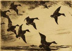"Frank Weston  Benson, etching ""Black Ducks At Dusk"""