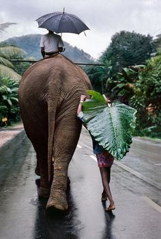 Steve McCurry, Kandy, Sri Lanka, 1995. During the 1980s and 90s, McCurry made a series of projects documenting monsoons in Asia and their effect on life in these areas.