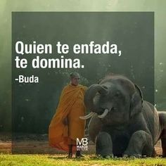 He who angers you, Dominates (you) - Buda This is as close as I could translate. Spanish Inspirational Quotes, Spanish Quotes, Citation Gandhi, Best Quotes, Life Quotes, A Course In Miracles, Frases Tumblr, Motivational Phrases, Lectures