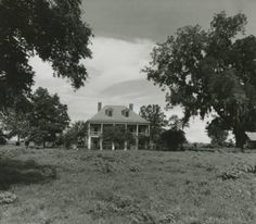 East Bank of River Rd, LA. Demolished during the Southern Plantation Homes, Southern Mansions, Southern Homes, Plantation Houses, Abandoned Plantations, Louisiana Plantations, Southern Architecture, Architecture Old, Abandoned Buildings