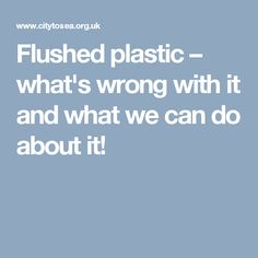 Flushed plastic – what's wrong with it and what we can do about it!