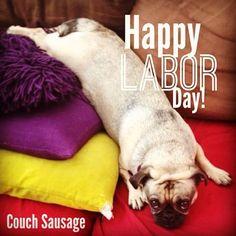 HAPPY LABOR DAY! #pugs #chugs #chugbaby #chuglife #laborday #puglife #pugloaf #puglove #instachug #ilovemypug #instagramdogs #followme #pugmania #pugstagram #pugsofinstagram