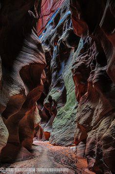 Buckskin Gulch, Vermilion Cliffs National Monument, Colorado Plateau, Utah