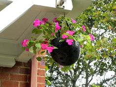 Recycle an old helmet into a hanging flower pot!