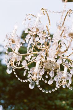 Pasadena Wedding by Events by Heather Ham + Picotte Weddings  Read more - http://www.stylemepretty.com/2012/01/30/pasadena-wedding-by-events-by-heather-ham-picotte-weddings/