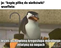 Funny Images, Funny Pictures, Funny Lyrics, Polish Memes, Best Memes Ever, School Memes, Funny Clips, Meme Faces, Good Mood