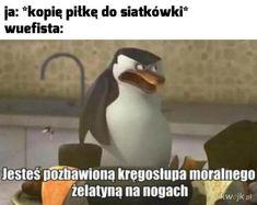 Memy i śmieszne obrazki z głownej - strona 42509 - KWEJK.pl Funny Images, Funny Pictures, Funny Lyrics, Polish Memes, Best Memes Ever, I Cant Even, Funny Clips, Meme Faces, Good Mood