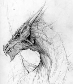 Dragon by PauloSaracchini.deviantart.com on @DeviantArt