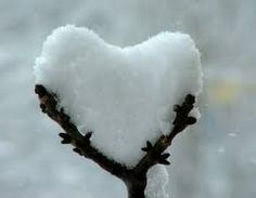 PopMuseSic would like to wish everyone LOVE this Valentines Day. Here are some amazing images of naturally occurring heart shapes in nature: Happy Valentines Day everyone! Heart In Nature, Heart Art, Peaceful Heart, Deco Nature, I Love Snow, I Love Heart, Happy Heart, Heart Pics, Heart Pictures