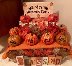 Mia's Pumpkin Patch. Fall Decoration.