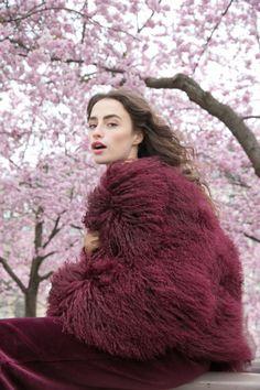 Mongolian Fur Jacket Dark Cherry