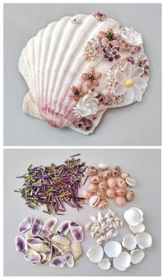 A big scallop shell with barnacles was decorated with seashell flowers. Seashells used: spotted cowrie, donax, cockles, sea urchin spines and other. Sea Crafts, Sea Glass Crafts, Seashell Art, Seashell Crafts, Seashell Projects, Coquille Saint Jacques, Shell Flowers, Shell Decorations, Seaside Decor