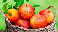 Como fazer o suco de maçãs para limpeza de fígado e vesícula - Basilio Artagoitia - YouTube