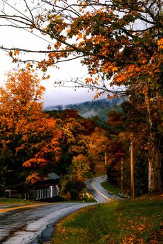 Your Guide To Leaf-Peeping In Manchester Vermont The Coastal Confidence Aubrey Yandow Manchester Vermont, Visit Manchester, Maine In The Fall, Vermont In The Fall, Autumn Inspiration, Travel Inspiration, Fashion Inspiration, New England Fall Foliage, Autumn Scenes