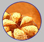 Cheese Scones Recipe - another bero favourite that Nana used to make