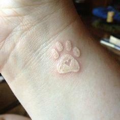 tiny dog paw print tattoo