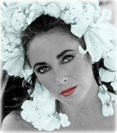 Gone Beauty. Elizabeth Taylor