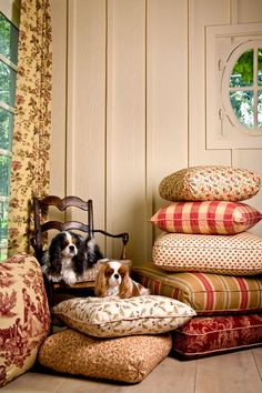 Charles Faudree's beloved Cavalier King Charles Spaniels sitting pretty on pillows made from his fabric collection - Traditional Home®