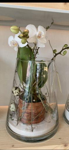 Plantation, Glass Vase, Creations, Home Decor, Flowers, Decoration Home, Room Decor, Interior Design, Home Interiors