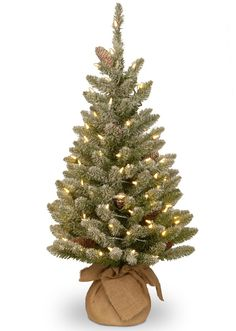 National Tree SR1-328-30-B 3' Snowy Concolor Fir Small Tree in Burlap with Snowy Cones & Warm White Battery Operated LEDs with Timer