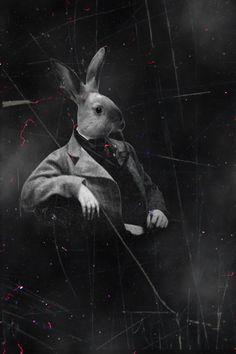 Mr. Rabbit by ManonMorel.deviantart.com on @deviantART