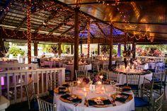 Paradise Cove, Lake Buena Vista, Florida...Blue and Purple Wedding Decor