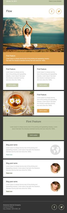 Flow Email Newsletter Template