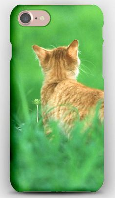 iPhone 7 Case Cat, Ginger, Grass, Tail