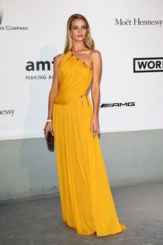 Rosie Huntington-Whiteley in Emilio Pucci, AMFAR GALA 2014