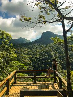 Trilha do Mirante da Cascatinha, na Floresta da Tijuca, Rio de Janeiro #trilha #fotos #riodejaneiro #natureza