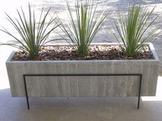 Concrete Planter by TK Smith