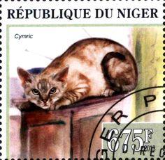 Cymric (Niger) Mi:NE 2157