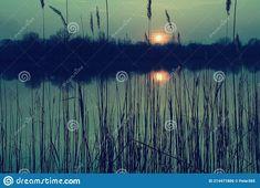 Photo about Natural gravel lake. Photographed at sunset. Slovakia. Image of beautiful, kava, europe - 214471806 Animals Images, Environment, Europe, Stock Photos, Sunset, Natural, Flowers, Plants, Beautiful