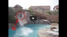 I love water slides as much as the next person, but the level of enthusiasm displayed by this Doberman Pinscher is unbelievable. This Dog Loves Water Slide.