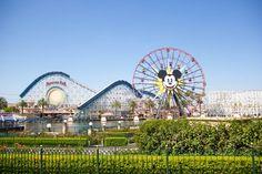 Disney California Adventure  mylemondroplife.com